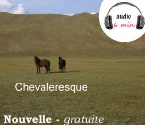 chevaleresque laurent M Veronique Gallet AndMisterLucien audio
